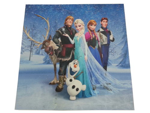 KY-3040FROZEN  |Products|Print Play mats